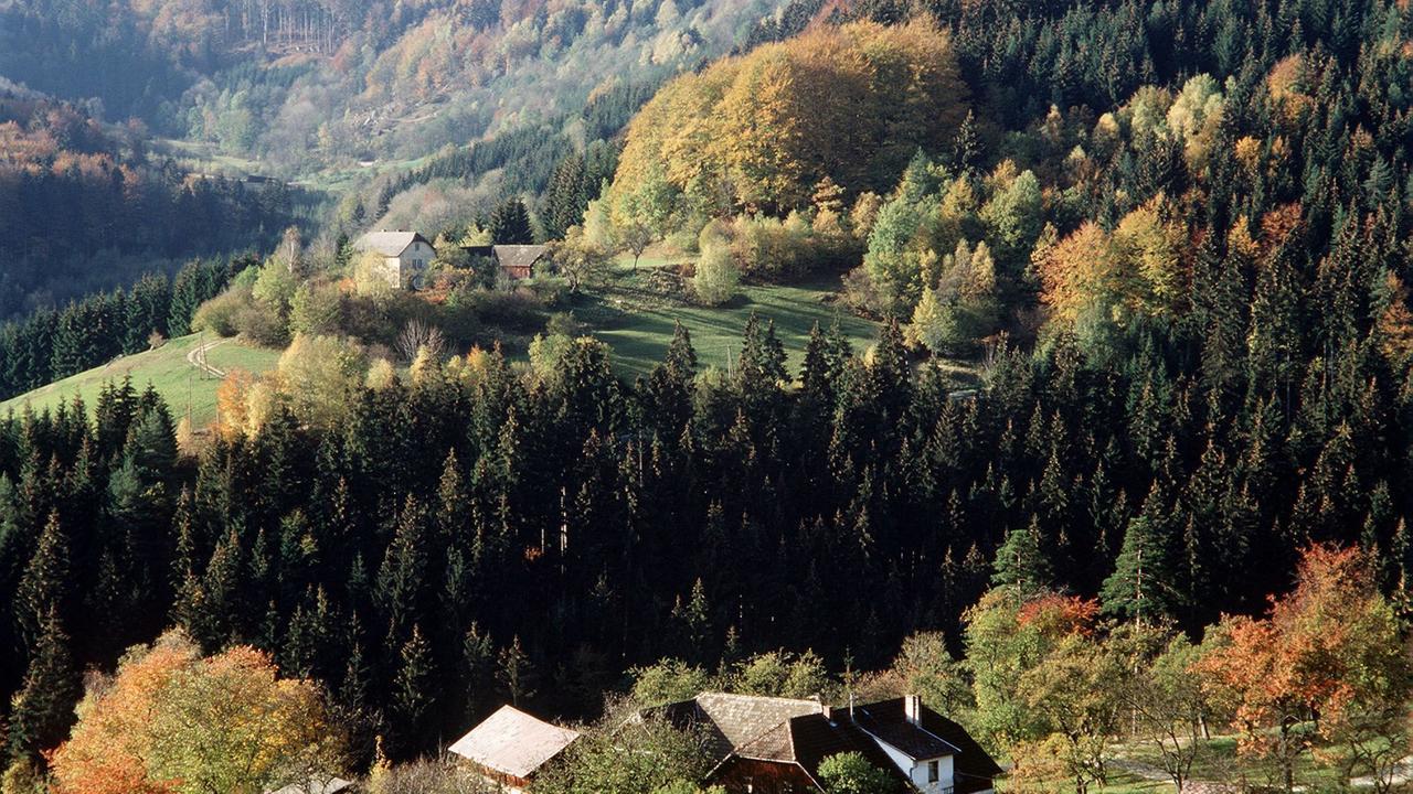 Wienerwald De