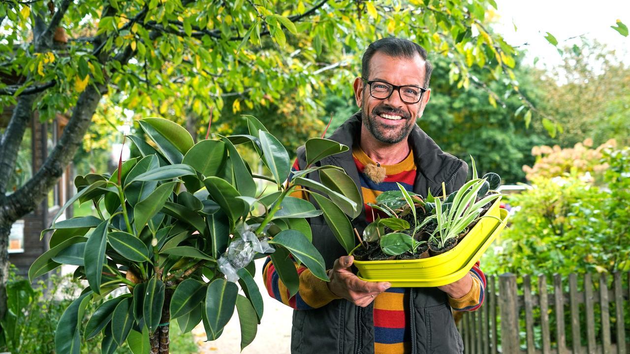 Natur im Garten (10/10) - Best of - Der Natur im Garten ...