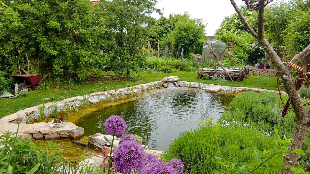 Natur im Garten - Für Vielfalt braucht man keine großen ...